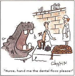Funny Dental Jokes Browsing thru the internet and found these photos and thought I should post .. What do you think