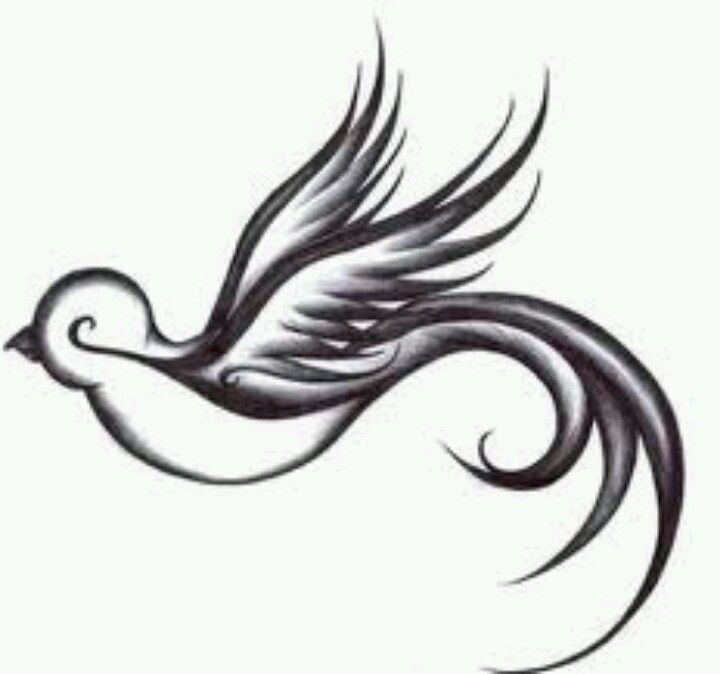 """This bird for my """"with brave wings she flies"""" shoulder tatt?"""