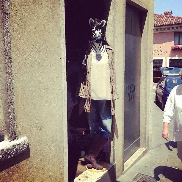 Animals @ Maxi' Grandi Taglie Donna - www.maxidonna.it # BdG