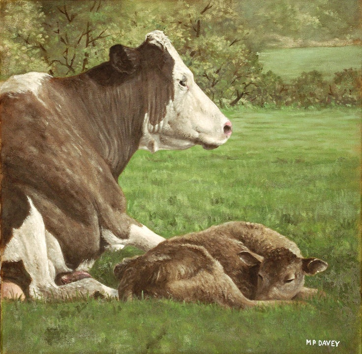 COW AND CALF IN FIELD living happily instead of being raised for meat only and killed at a young age. Most female cows never stay with their new born calves.