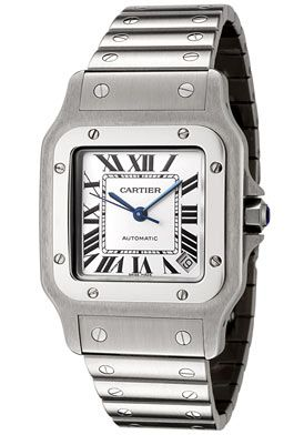 Cartier Men's Santos de Cartier Stainless Steel Watch  - my dad's watch.  I've worn it everyday for almost 15 years.