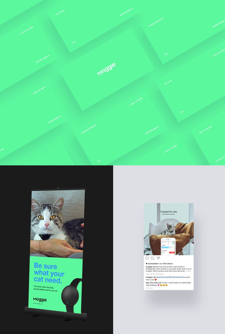 Industrial Design and Branding of Moggie | Abduzeedo