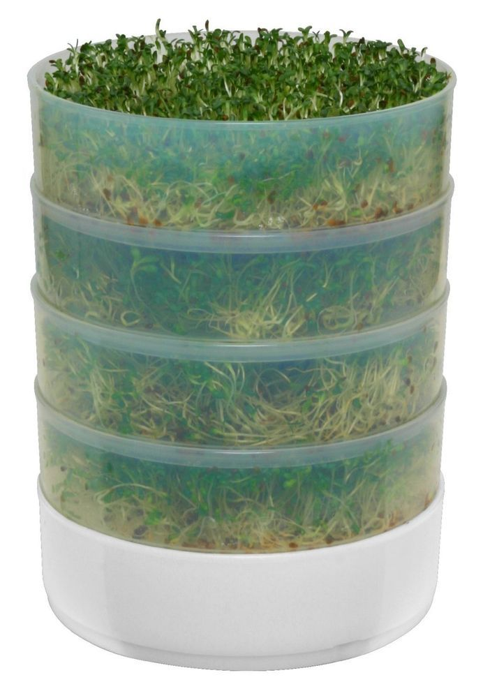 Victorio 4 Tray Kitchen Seed Sprouter Salad Sprout Alfalfa Broccoli & Other Seed #VICTORIO