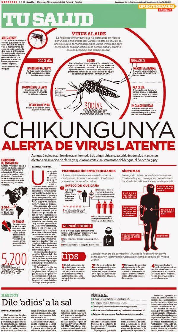 Chikungunya   infographic español