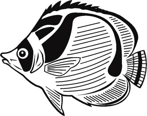 Butterfly Fish Coloring Page For Kids And Adults From Fishes Pages Other