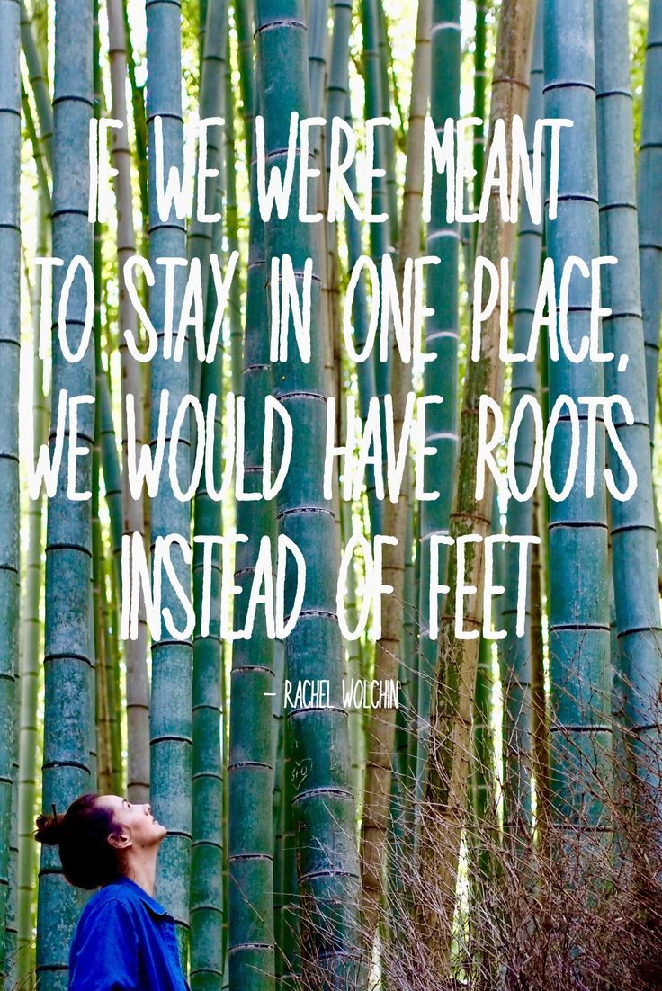 """Inspirational travel quotes. """"If we were meant to stay in one place, we would have roots instead of feet"""" - Rachel Wolchin. At Arashiyama Bamboo Grove in Kyoto, Japan. Be sure to follow my fashionable adventures around the world at http://hauteculturefashion.com/"""