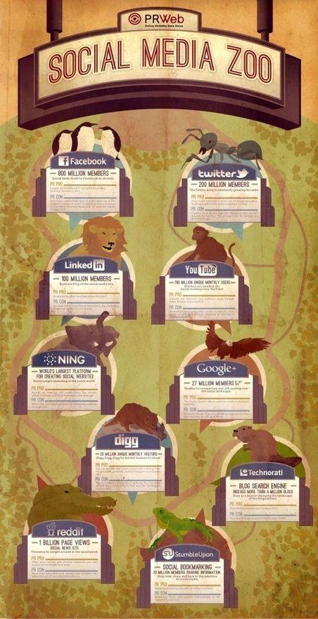 Social Media Infographic - Social Media Zoo  - SocialDude.com