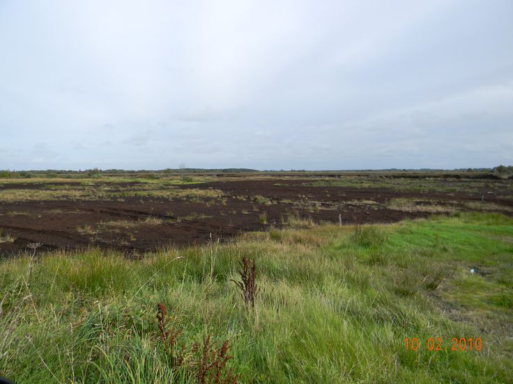Turf bog near Delvin, Co. Westmeath