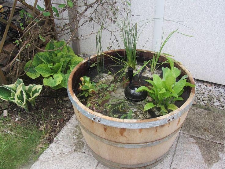 http://steinigergarten.blogspot.de/2013/05/miniteich-im-fass.html