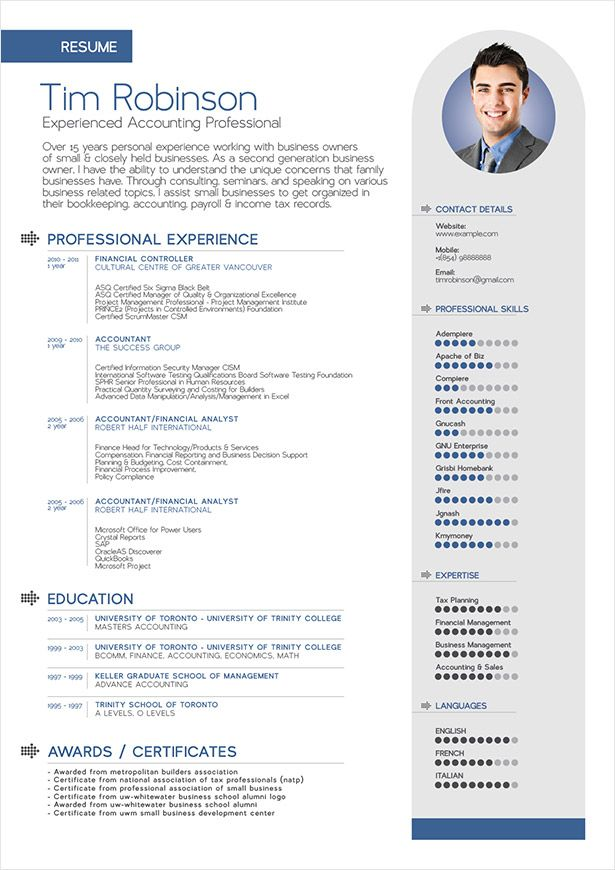 free simple professional resume template in ai format - Business Resume Templates