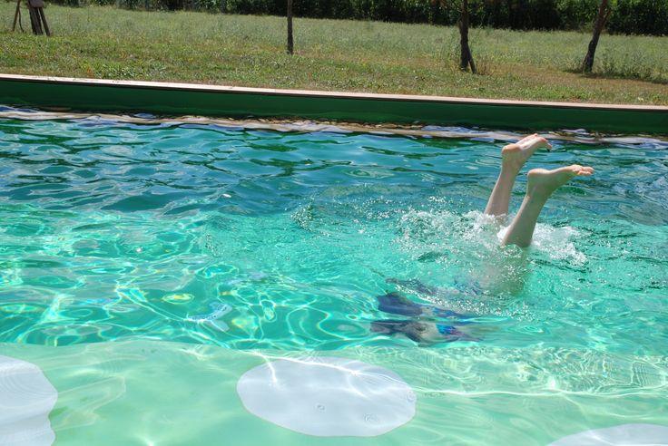 Détente dans la piscine écologique à Brin de Cocagne - Chambre d'hôtes écologique de charme dans le Tarn près d'Albi - Brin de Cocagne