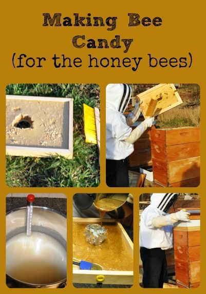 describes how to make and install candy in hives to feed honey bees in