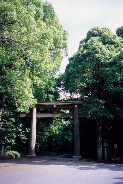 Meiji Shrine, Tokyo, Japan: photo by Sivaz, via Flickr