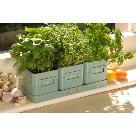 Kitchen Garden Pots: Herb Pots, Kitchen