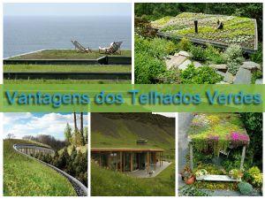 vantagens telhados verdes