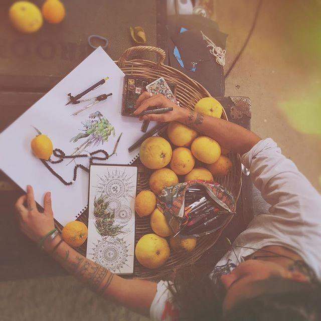 #drawing #tattoo #art #ink  #draw #sketch #croquis #fruit #organic #bopcreative #marionbeaupere #