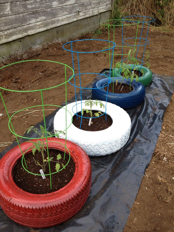 Repurposed tires.....to NOT grow edibles in tyres  #recycedtyres #aboutthegarden.com.au
