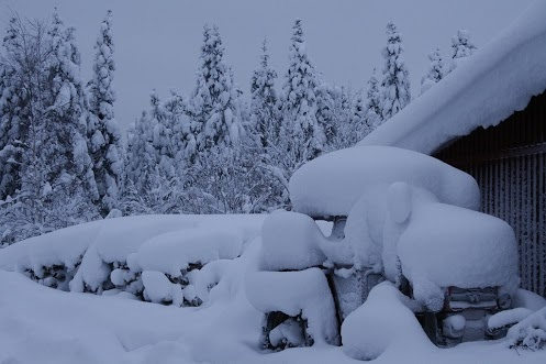 In the Lapland is a nice winter. #lapland   #snow   #winter
