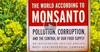 109 minutes | A documentary that Americans won't ever see. The gigantic biotech corporation Monsanto is threatening to destroy the agricultural biodiversity which has served mankind for thousands of... http://www.filmsforaction.org/watch/the_world_according_to_monsanto/