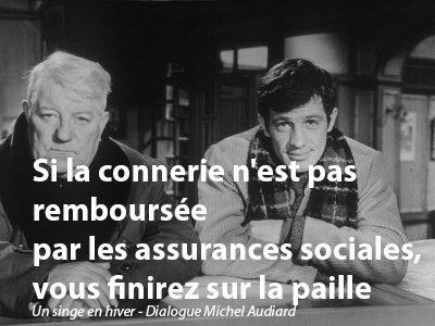 «Si la connerie n'est pas remboursée par les assurances sociales, vous finirez sur la paille.»  Un singe en hiver Dialogue Michel Audiard