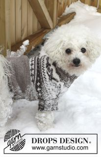 """Let's Go - Knitted DROPS dog's jumper with Norwegian pattern in """"Karisma"""". Size XS - L. - Free pattern by DROPS Design"""