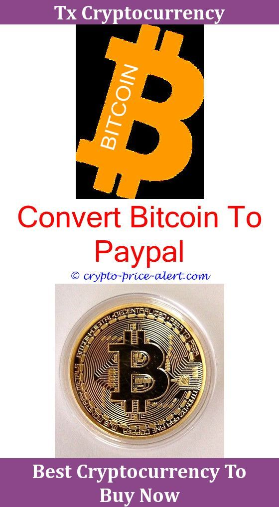 Bitcoin Forex Brokers for - Check Them Out