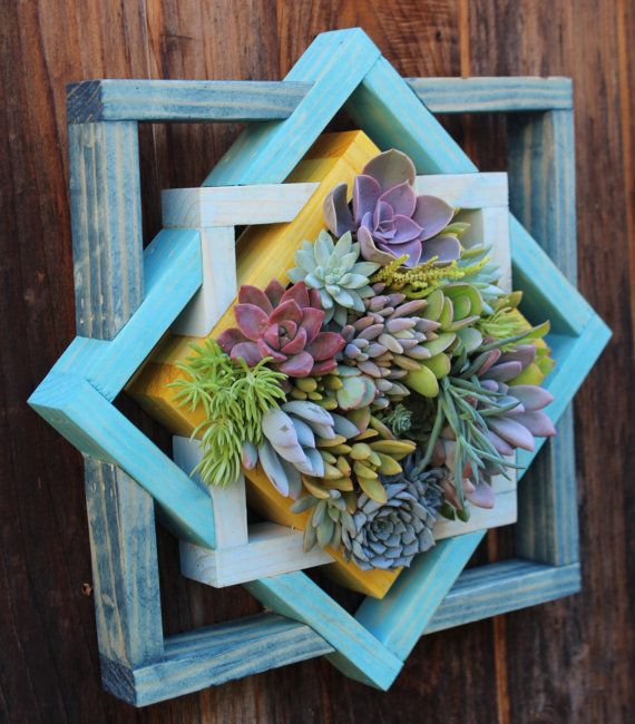 Geometric Vertical Garden in shades of blue and yellow. Please allow 3 weeks for completion. You will receive a similar variety of plants. Planter comes with wall hanger installed and ready to hang. Approximate Dimensions: 15 x 15  All plants locally grown here in Ventura County, California and are REAL!  Care instructions included. Low maintenance and makes an excellent gift. (Just add the message you would like to include)  Please email me if you have any questions about the plants…