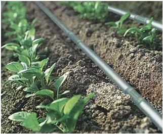 les 25 meilleures id es de la cat gorie irrigation agriculture sur pinterest syst me d. Black Bedroom Furniture Sets. Home Design Ideas