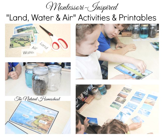 3 Montessori-Inspired Land, Water and Air Activities with free printables