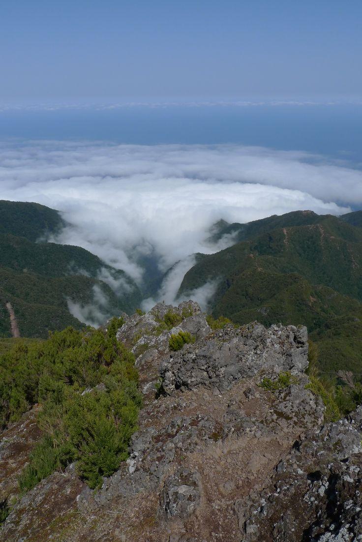 Madeira, March 2011
