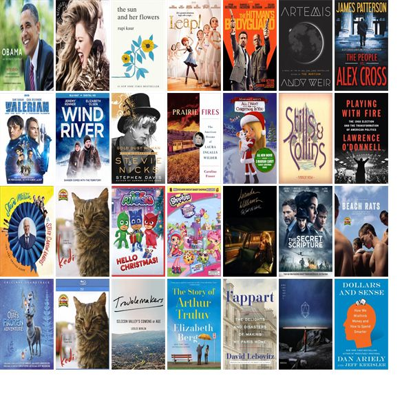 "Wednesday, November 22, 2017: The Kirkwood Public Library has 21 new bestsellers, 39 new movies, 15 new music CDs, 21 new children's books, and 82 other new books.   The new titles this week include ""Obama: An Intimate Portrait,"" ""Meaning Of Life,"" and ""The Sun and Her Flowers."""
