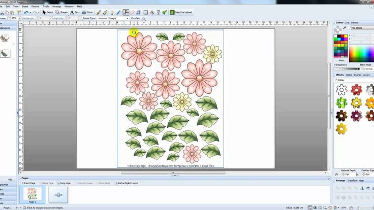 Craft Artist Selecting single images from sheets of images