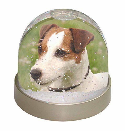 Jack Russell Terrier Dog Globe de neige de dÃŽme Waterbal... https://www.amazon.fr/dp/B005OWIDIA/ref=cm_sw_r_pi_dp_B5NzxbV7CHRVS
