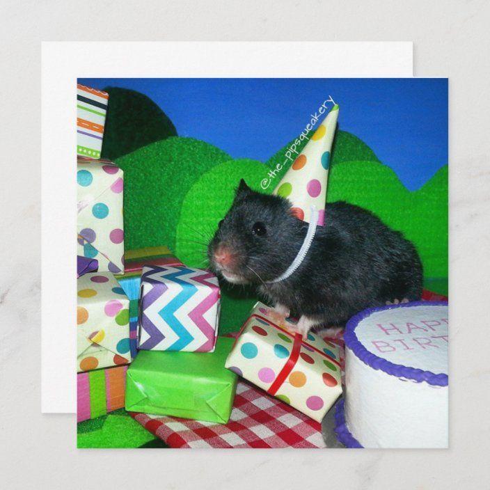 Happy Hamster Birthday Card Zazzle Com Hamster Birthday Personalized Birthday