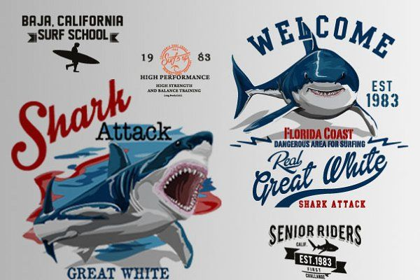 shark and surf illustrations by OLD SCHOOL on @creativemarket