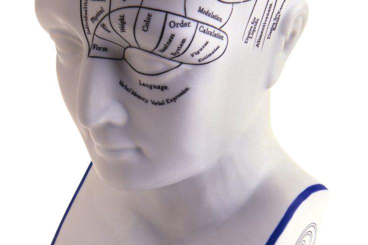 ¿Cuáles son las funciones de los nervios craneales? | Muy Fitness