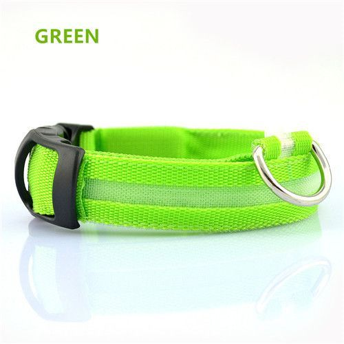 New USB Rechargeable LED dog Collar / Sizes S-XL
