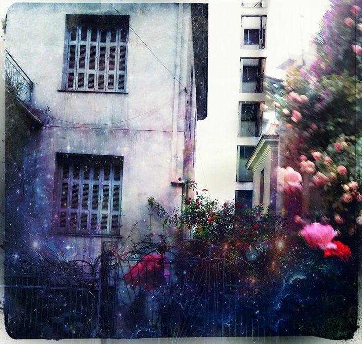 ρετροσπεκτίβα #volos #gallias #stigmography #neoklismantas #flower
