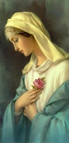 I am a flower of Sharon, a lily of the valley. As a lily among thorns, so is my beloved among women. - Song of Songs 2:1-2