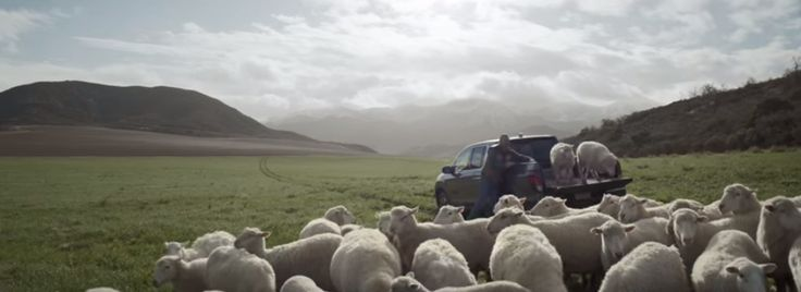 2016 Super Bowl Ad Winners And Losers In The New Heartland