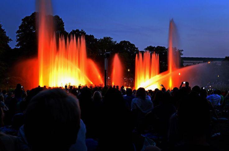 #hamburg #plantenunblomen #lichtspiele #light #night #lights #igersgermanyofficial #igersgermany #igers #igershh #wasserspiele