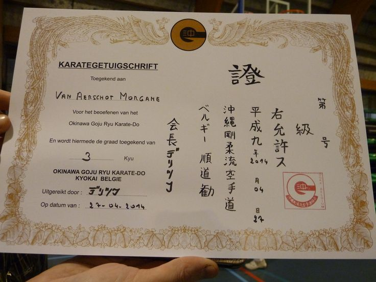 This is my diploma from my brown belt in karate. karate is not only a martial art but also a lifestyle and i really enjoy doing it!!