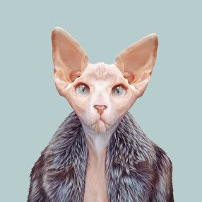 Zoo Portraits – Become the Animal » Zoo Portraits