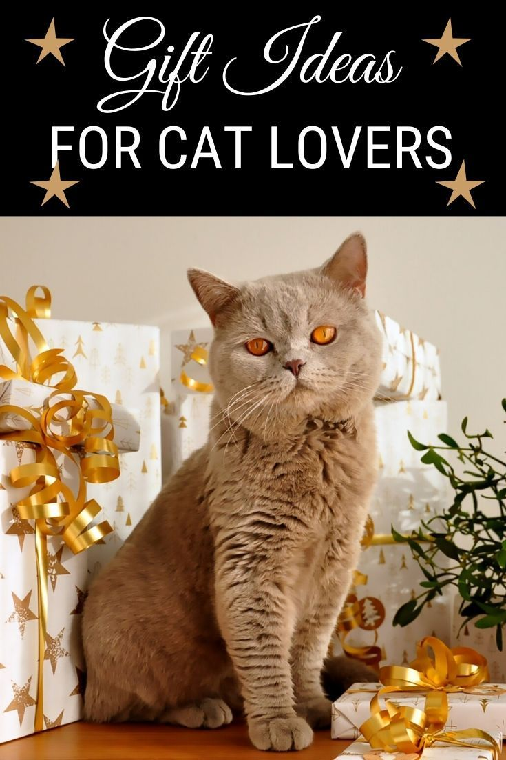 Purrfect Gift Ideas For Cat Lovers Cat Gifts For Cat Lovers Cat Lover Gifts Cat Gifts Cat Lovers