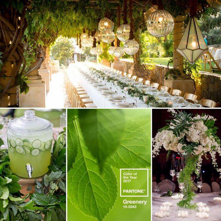 gs 0343 series sample resume%0A Botanical Wedding Theme  Forest Garden  Garden Weddings  Garden Wedding  Inspiration  David Tutera