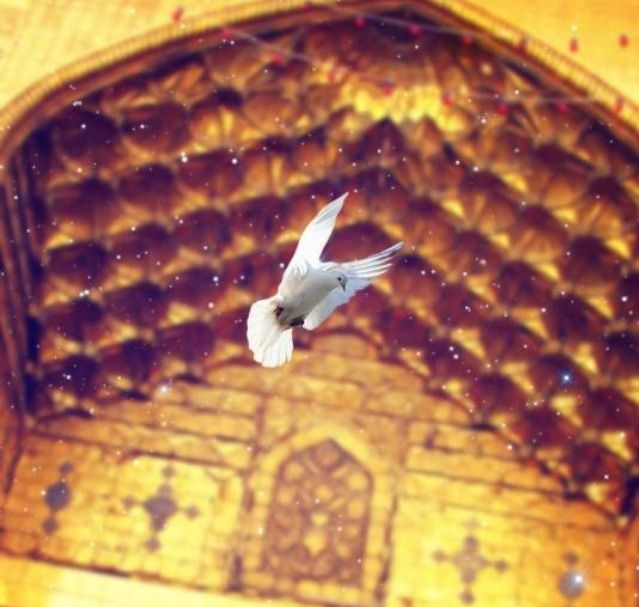 I envy! Every bird that can fly And visit Karbala.. Wander from sky to sky First at hazrat Abbas thereby And after at hazrat Hussain cry..  Fatima Abo Turab
