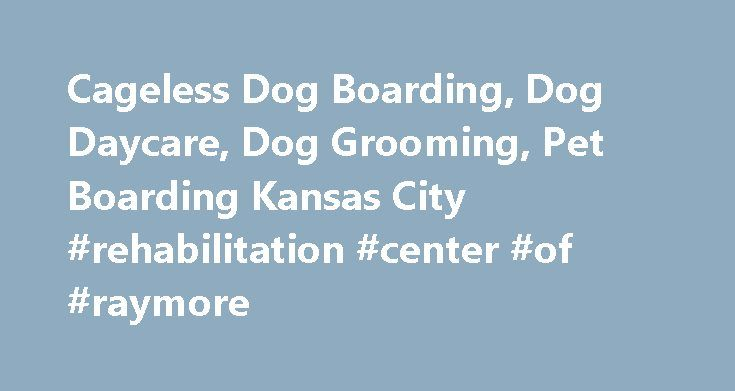 Cageless Dog Boarding, Dog Daycare, Dog Grooming, Pet Boarding Kansas City #rehabilitation #center #of #raymore http://spain.nef2.com/cageless-dog-boarding-dog-daycare-dog-grooming-pet-boarding-kansas-city-rehabilitation-center-of-raymore/  # Cage-less Dog Boarding Dog Daycare Professional Dog Grooming Dog Food, Treats, Bones, Toys, Collars & Leashes What our clients are saying I highly recommened Dog Pawz for grooming, play days, and overnights. We left town and had our boxer stay with them…