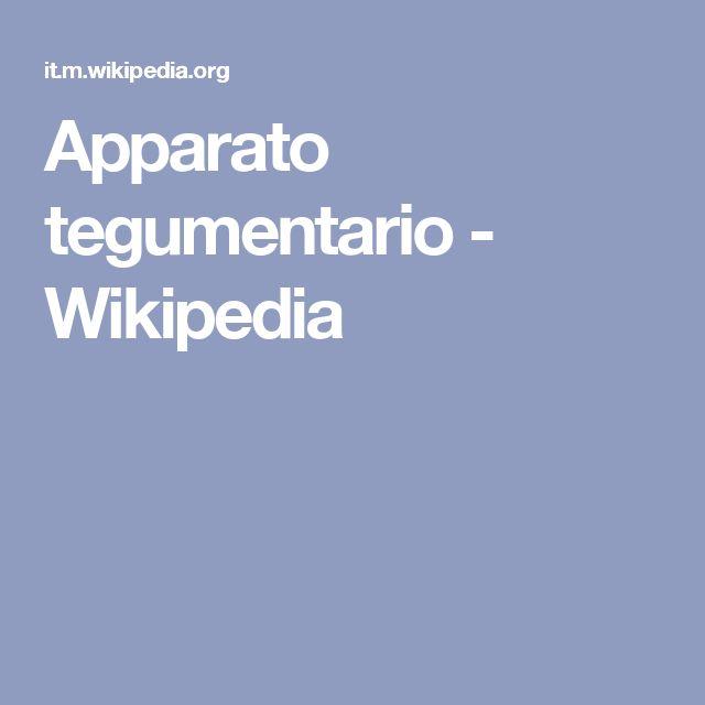 Apparato tegumentario - Wikipedia