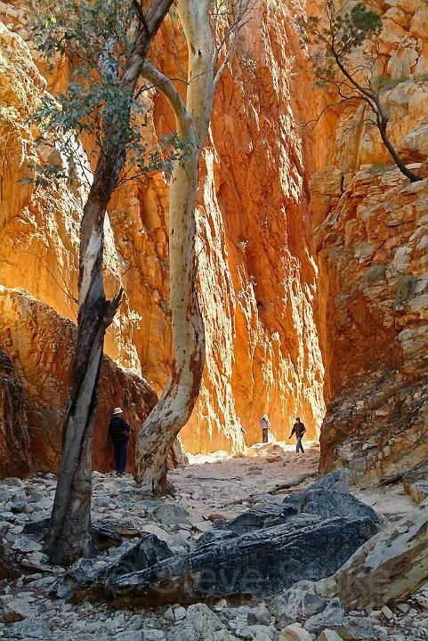 Standley Chasm, the outback near Alice Springs, Northern Territory, Australia by Steve Strike