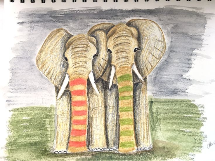 Elephants. The rare type with striped trunks. Colored pencil and water cooler pencil drawing by Marlene Jørgensen.